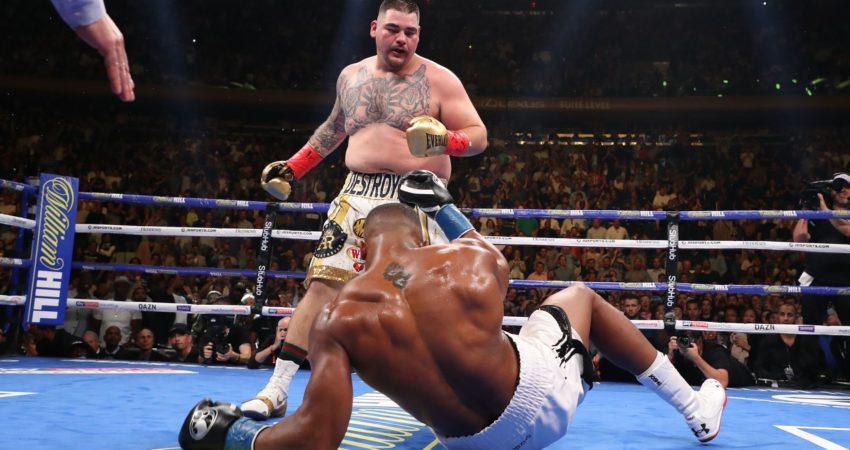 Andy Ruiz Jr nokautuje mistrza. (źródło: EastNews)